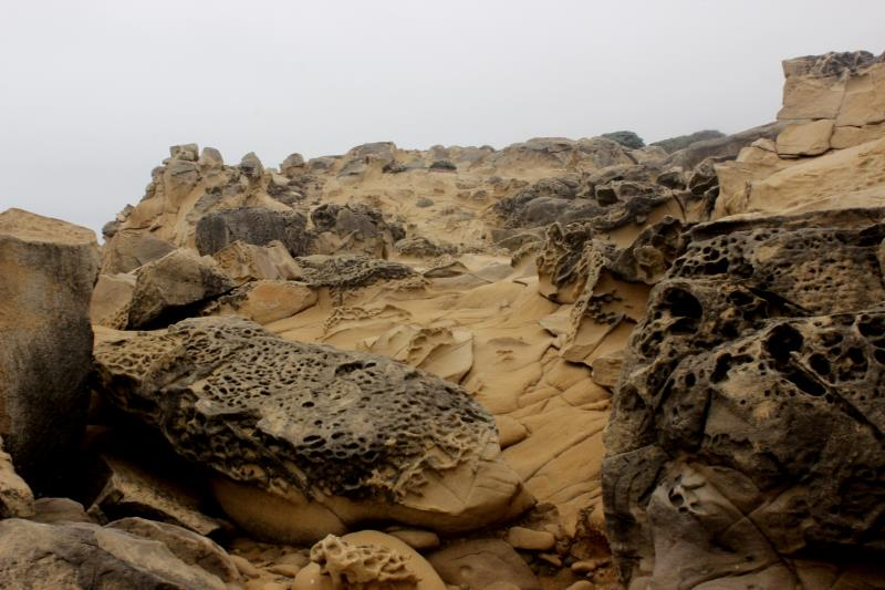 Rock formations in Salt Point