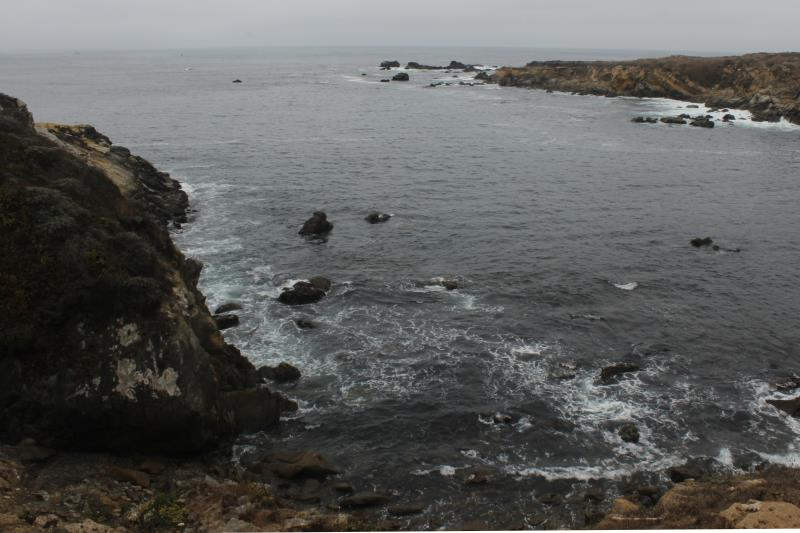 View of Salt Point, right Gerstle Cove on right in Salt Point State Park