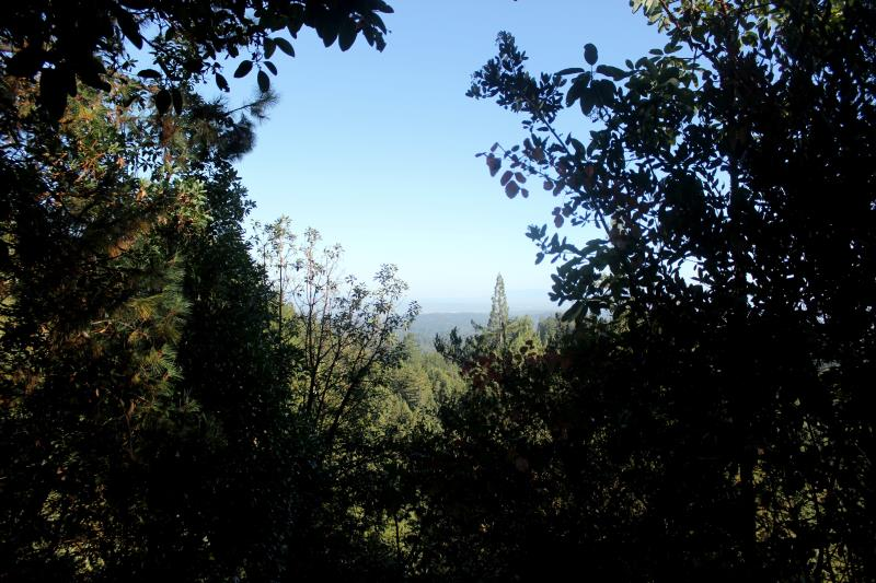 Outlook view on Aptos Creek Fire Road