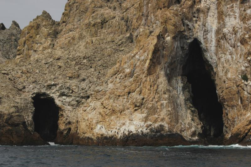 Caves in Farallon Islands