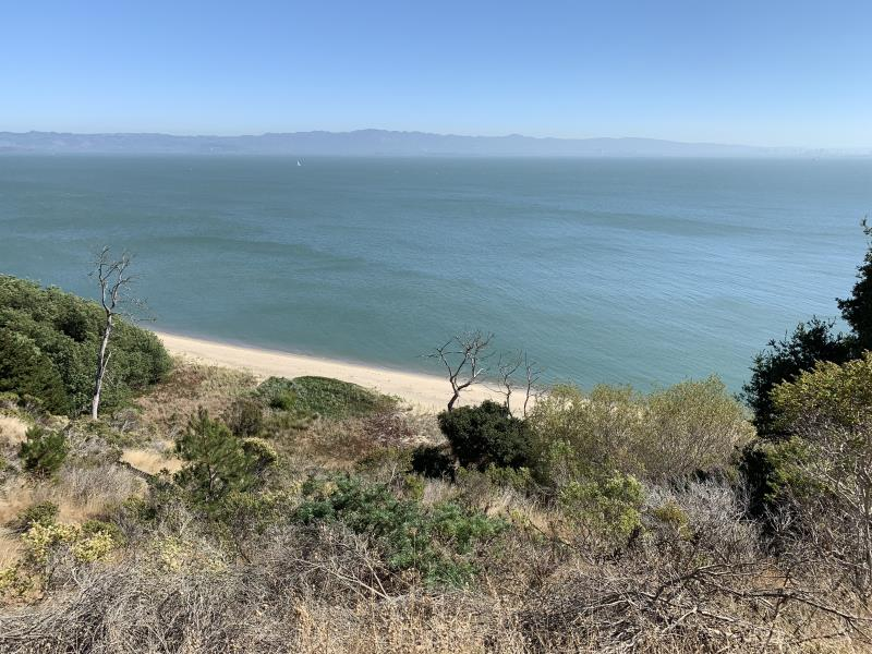 Beach seen from Angel Island