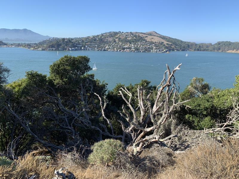 View of bay from Angel Island