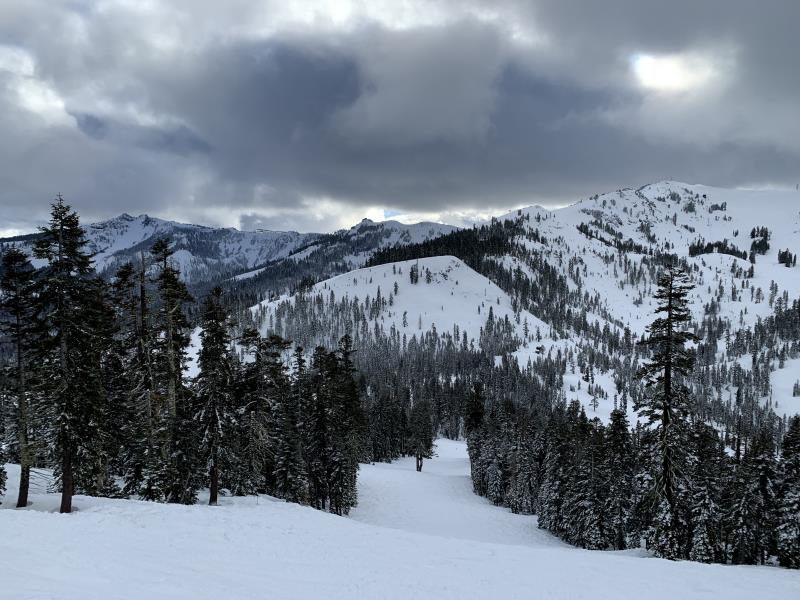 Trail view in Alpine Meadows