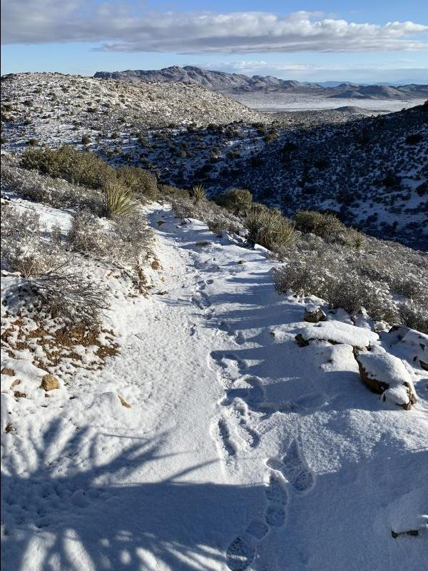 Trail after morning snow on Ryan Mountain