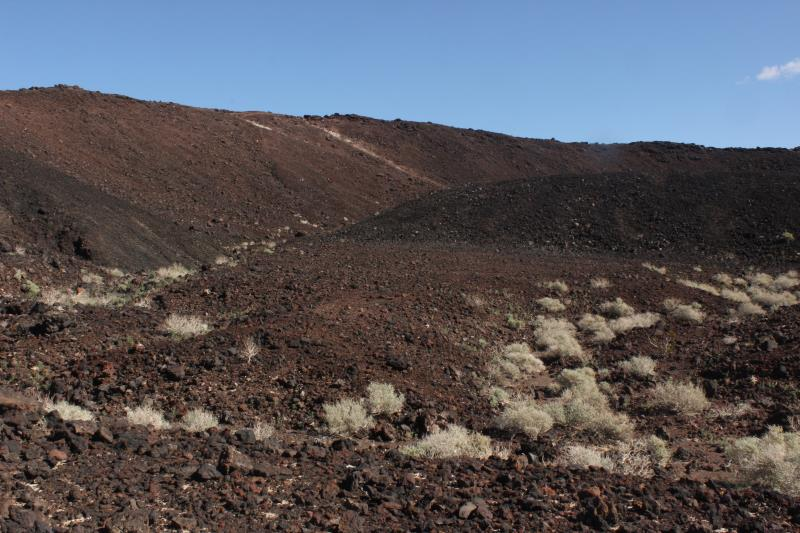 Near entrance of Amboy Crater