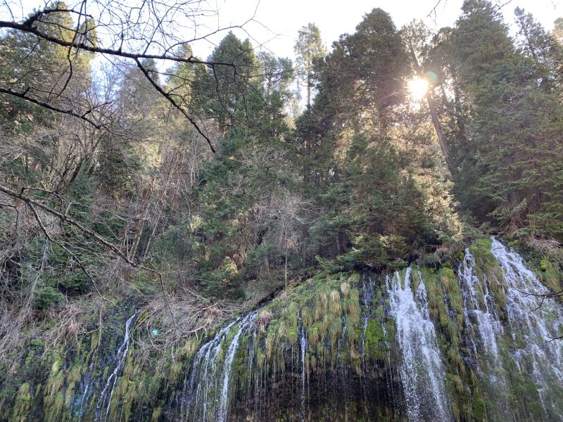 Mossbrae Falls, looking up