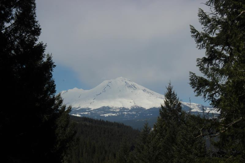 Mt. Shasta seen from Vista Point