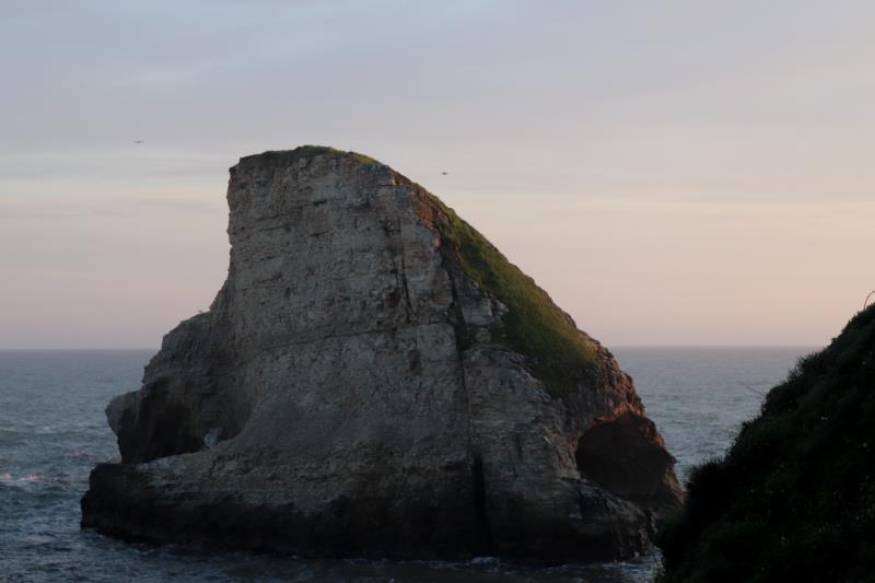 Shark Fin Cove seen higher up