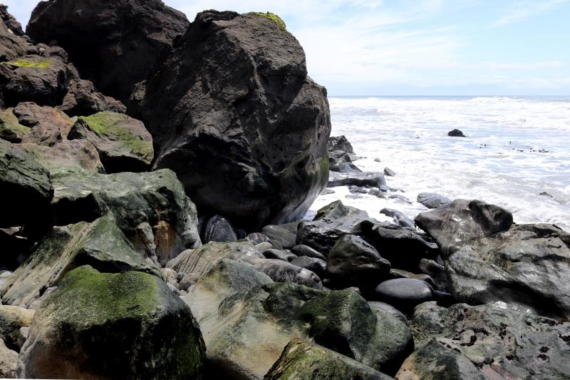 Rocks with algae from high tide on Lost Coast Trail