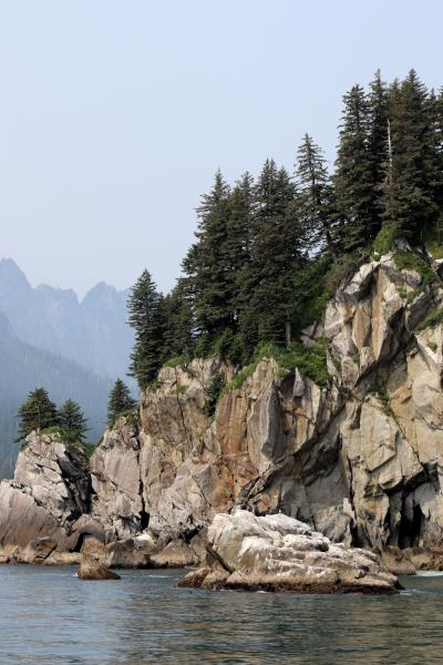 Jagged rocks with trees