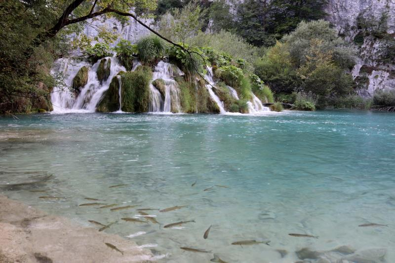 Waterfalls into clear water lake with fish