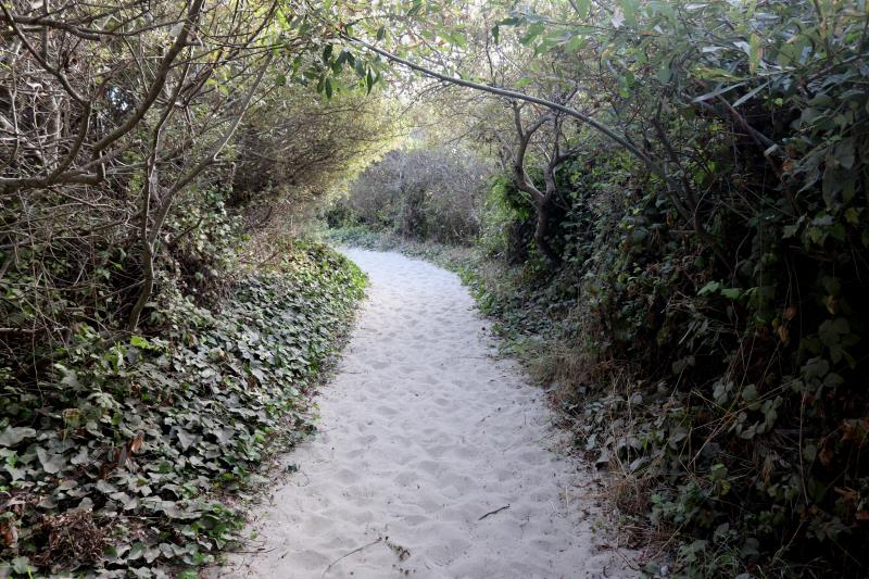 Final walkway in sand to Stinson Beach