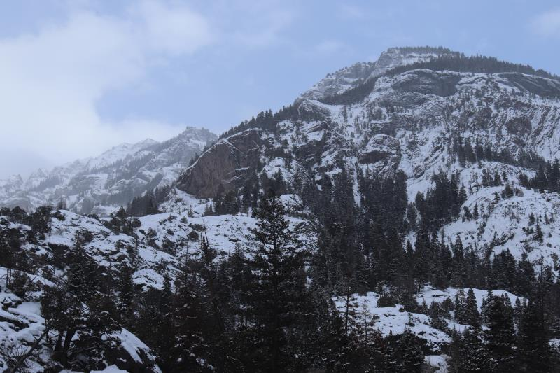 View of mountains and trees from perimeter trail in Ouray Ice Park