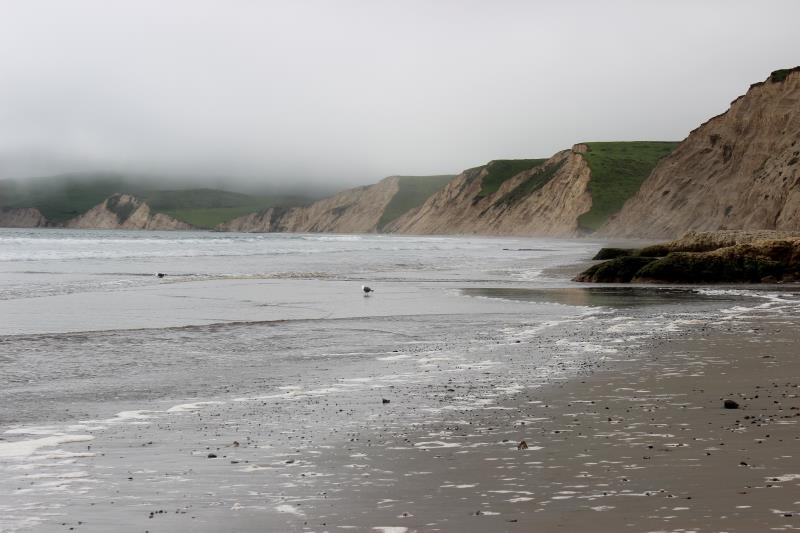 Point Reyes at beach