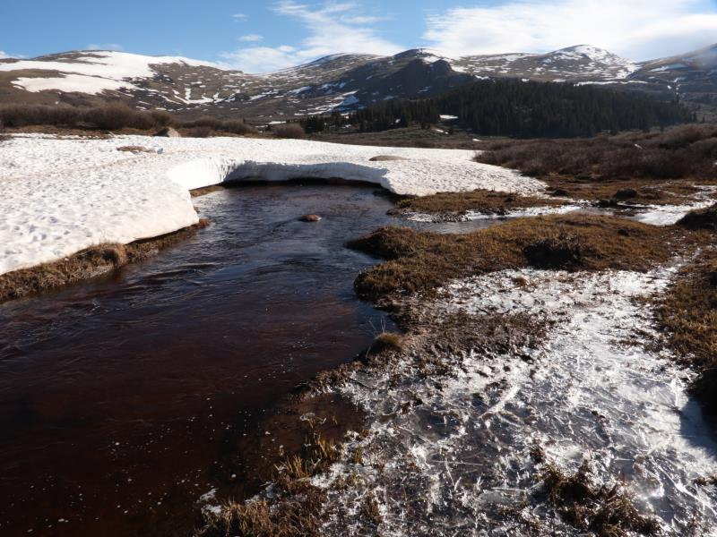 Stream to cross with snow-bridge on Bierstadt