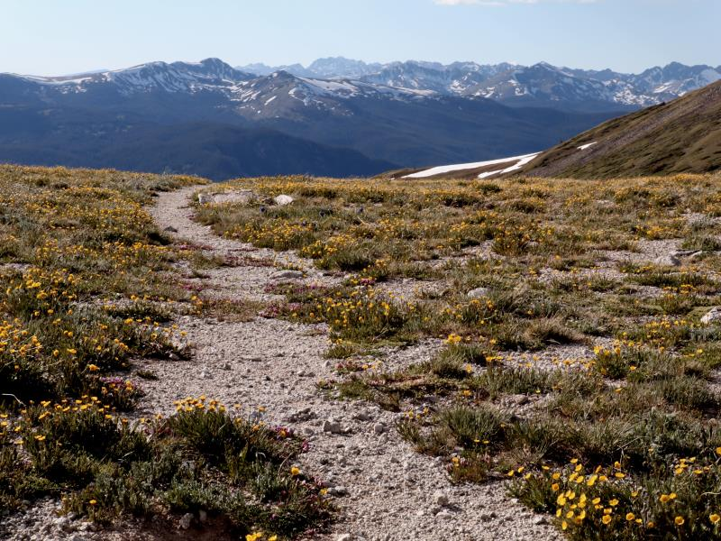Crossing over the ridge to Copper Mountain on the Wheeler Trail