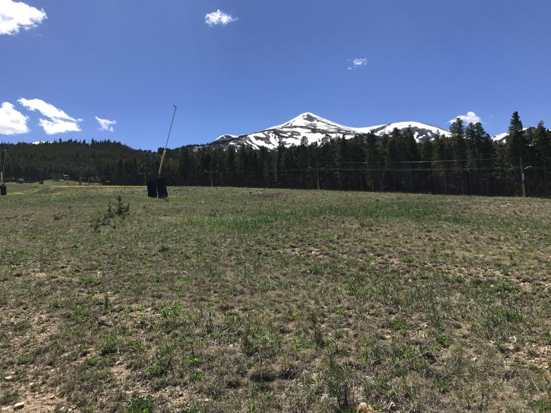 Near the base of Peak 8 in Breckenridge