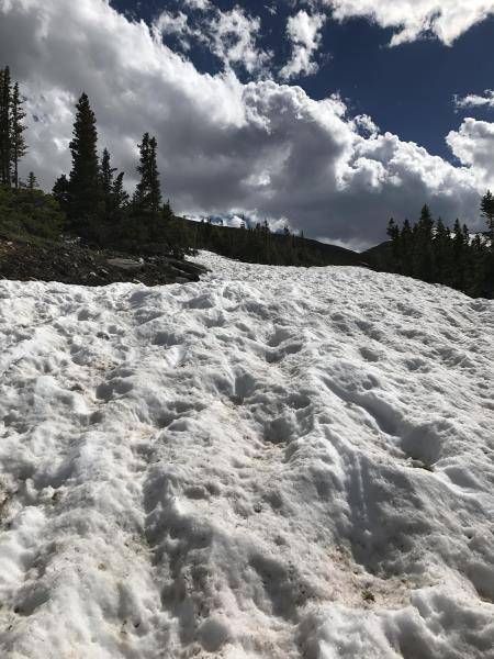 While walking through snow on the road to Wheeler Trail in Breckenridge