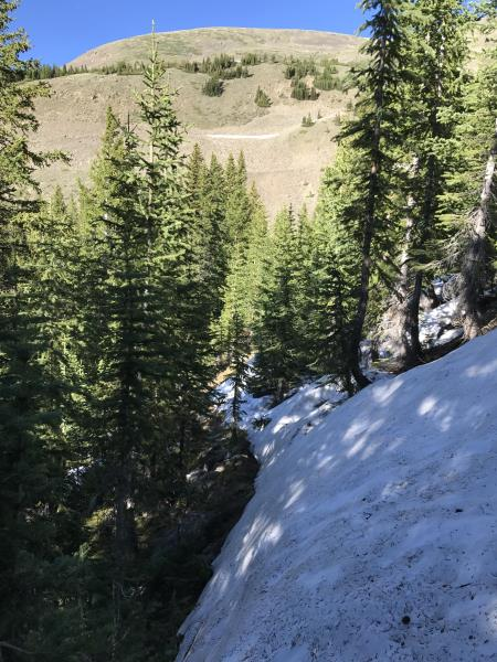 Snowed out part of Wheeler Trail