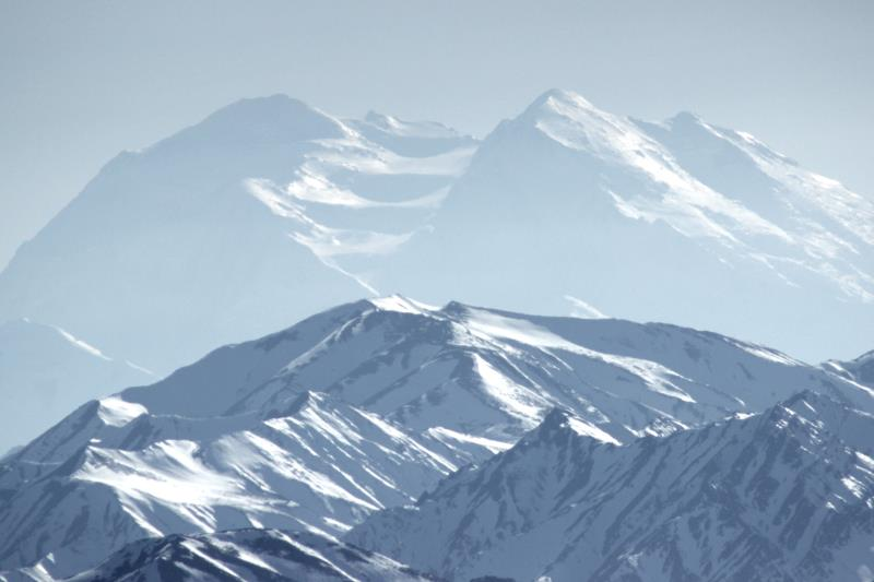 Denali up close from Savage Alpine Trail