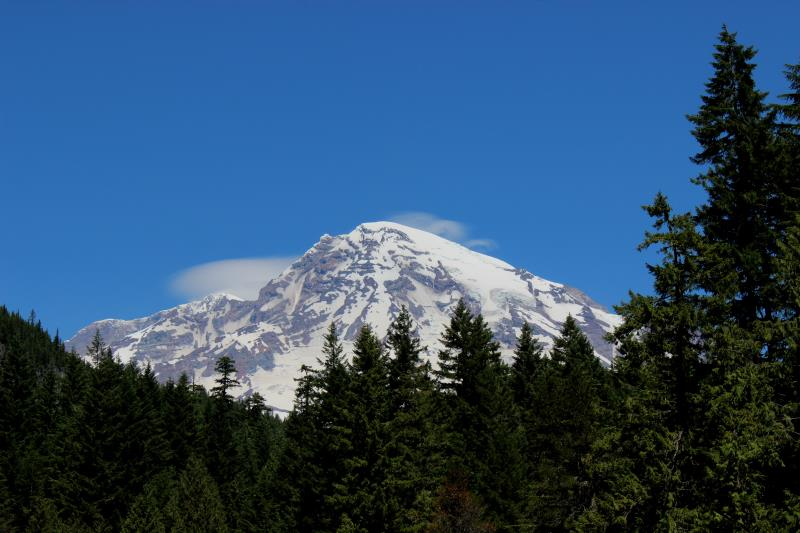 View of Mt. Rainier near Longmire Wilderness Information Center on Saturday, July 15, 2017