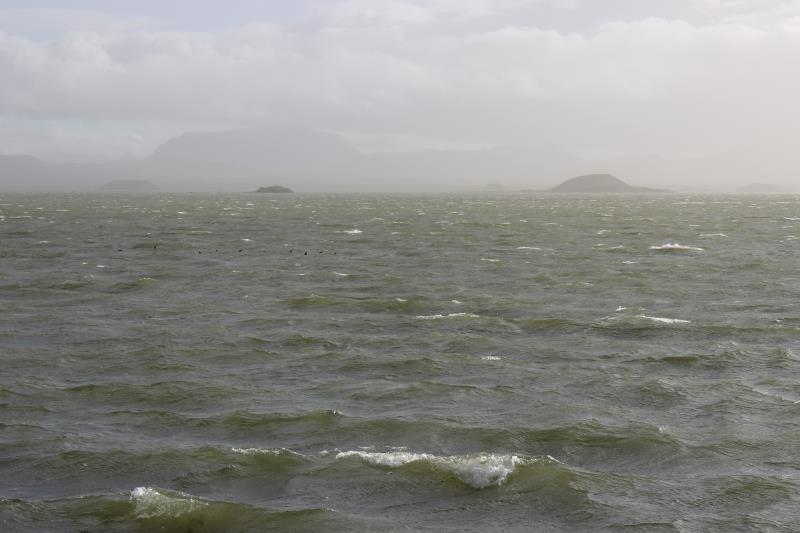 Windy waves with ducks in water at Mývatn lake