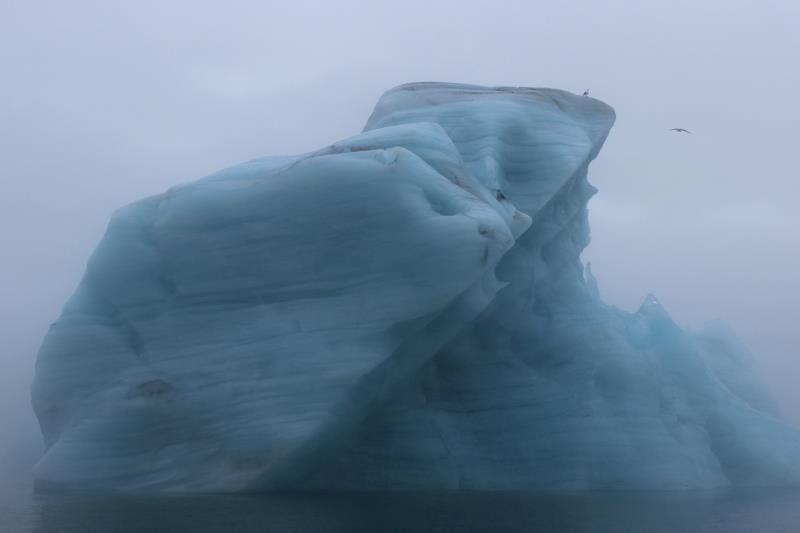 Iceberg seen from boat with a bird on it and another flying by