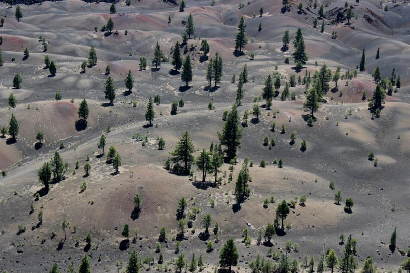 Painted Dunes seen along edge of Cinder Cone